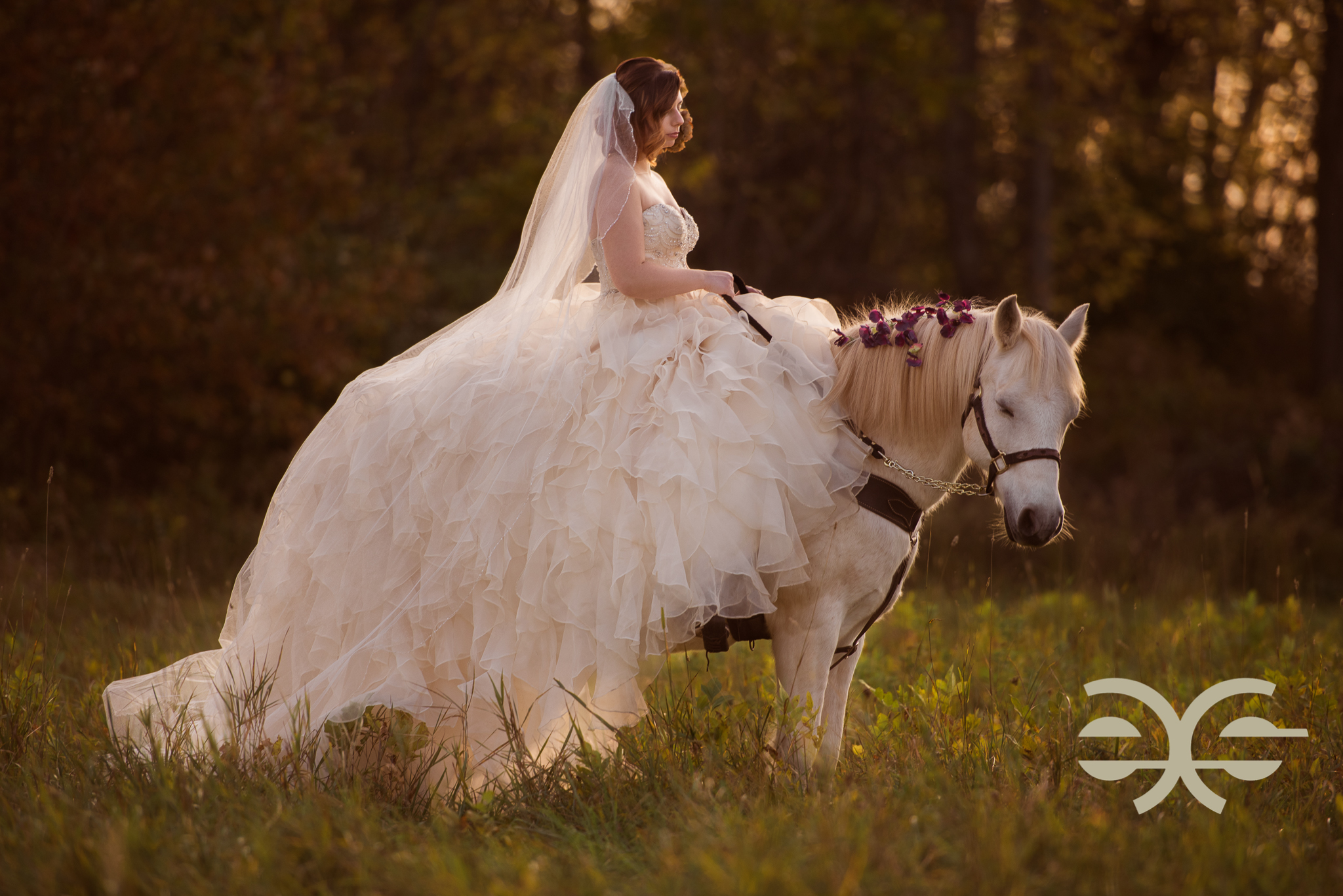 A bride on a horse in Buffalo, NY
