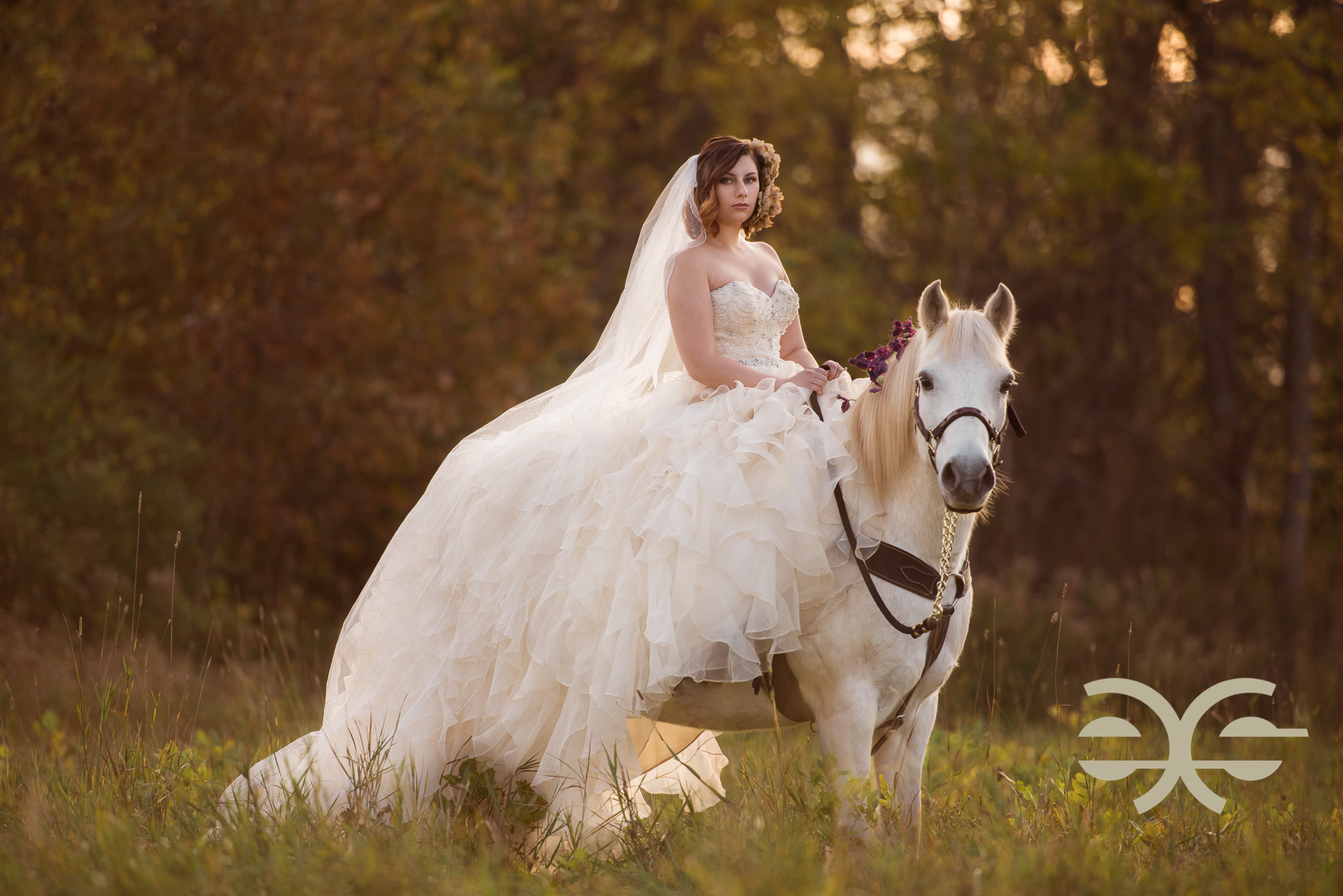 A bride with her horse in Buffalo, NY