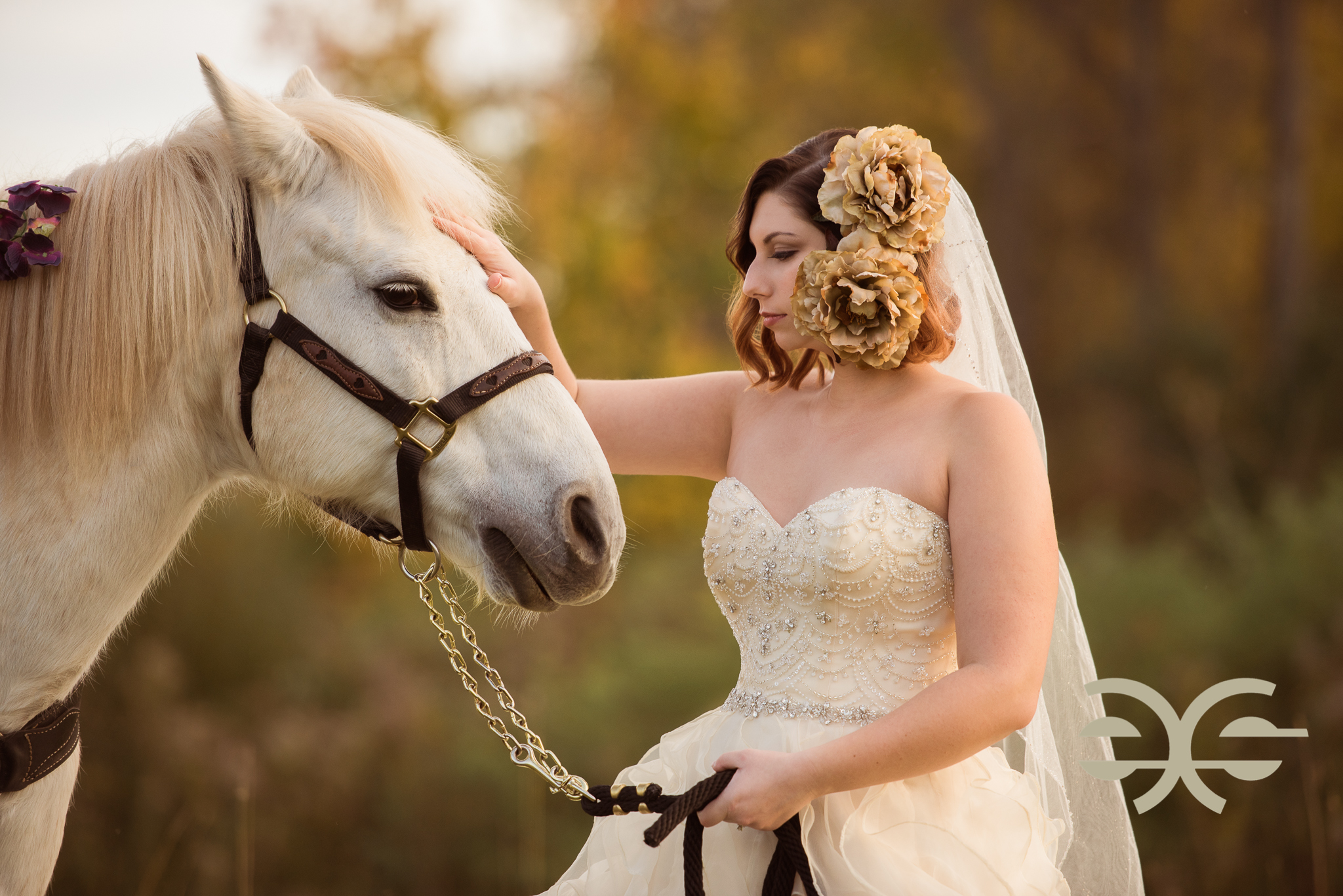 A bride and her horse in Buffalo, NY