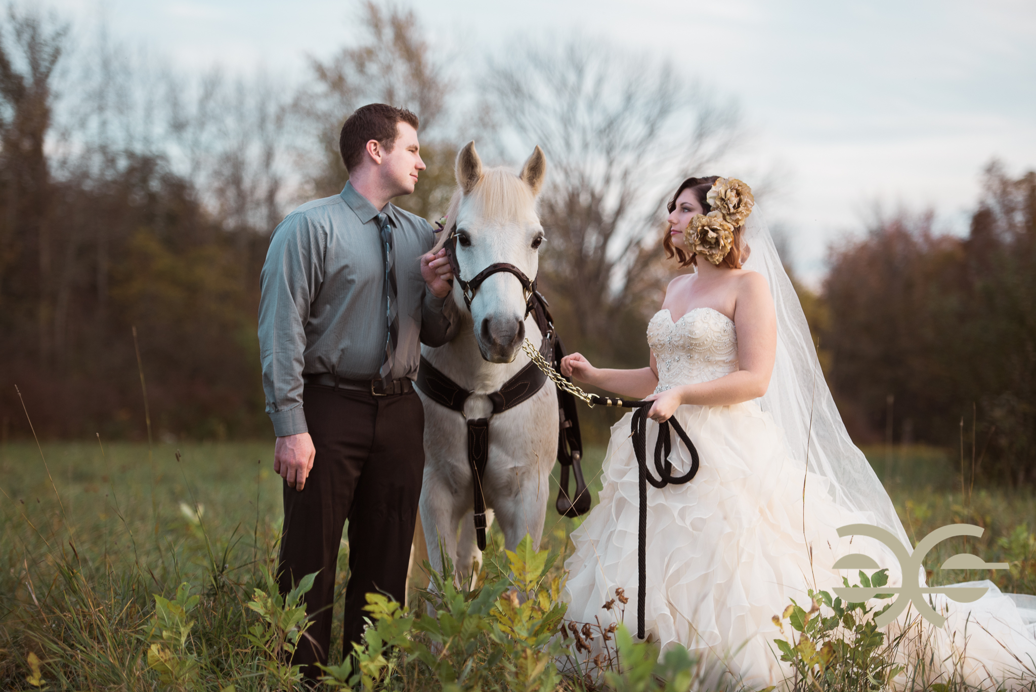 A bride and groom with their horse in Buffalo, NY